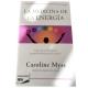 libro medicina de la energia chile
