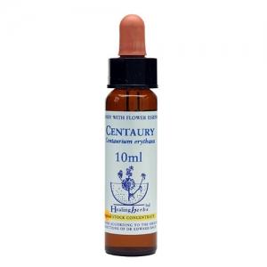 centaury healing herbs