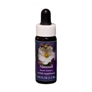 almond sierra de luz flores de california