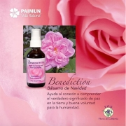 benediction oil flores de california