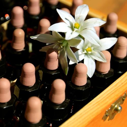 accesorios para terapeuta floral