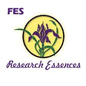 FES Research Essences