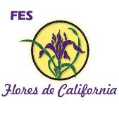 flores de california FES