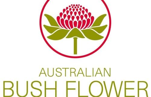 flores de bush
