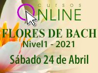 curso flores de bach chile